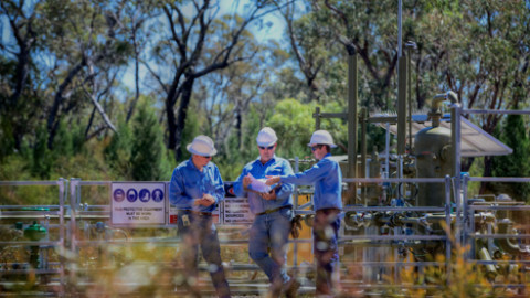 Pilliga update: 