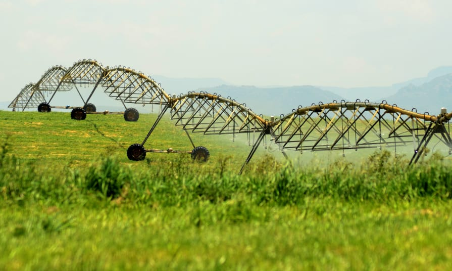 Key milestone reached in Circular Head Irrigation Scheme