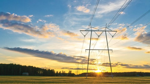Smart grids: shifting focus from the technology to the customer