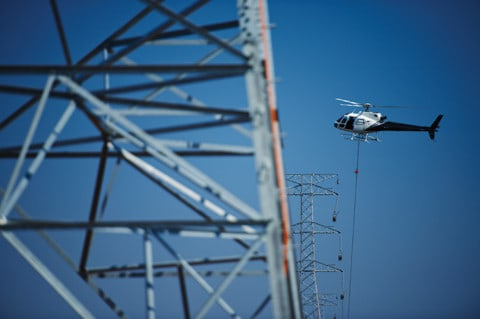 Innovative approach to  biosecurity  around  powerlines