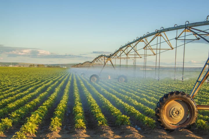Advance water available for irrigators