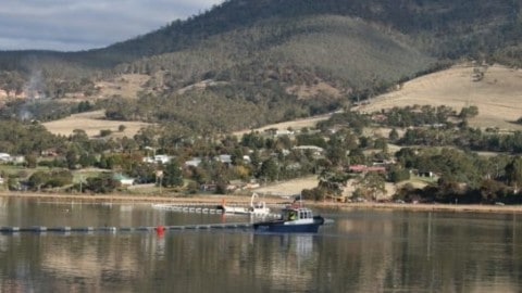Fruitful outcomes for regional tasmania