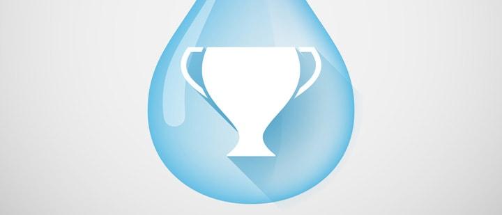 Australian utility wins international award