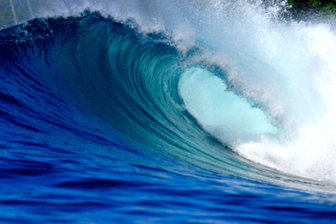 Tender called for wave energy technology