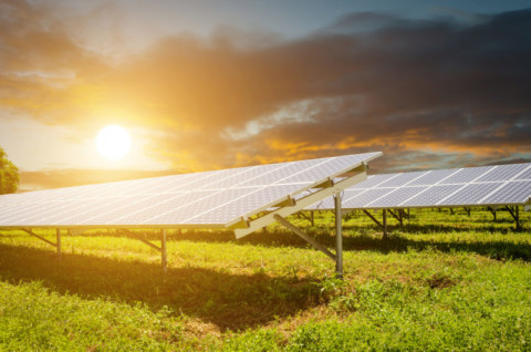 Queensland's largest solar farm gets the go-ahead