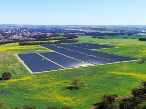 Northam Solar Farm reaches new milestone