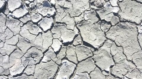 Academics call for reforms to Murray-Darling Basin projects