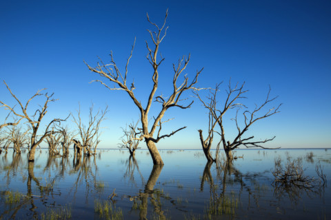 WaterNSW releases figures on lakes usage
