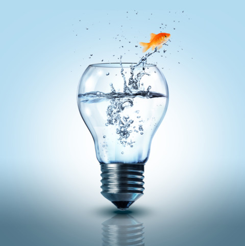 Utility to pilot water efficiency technology