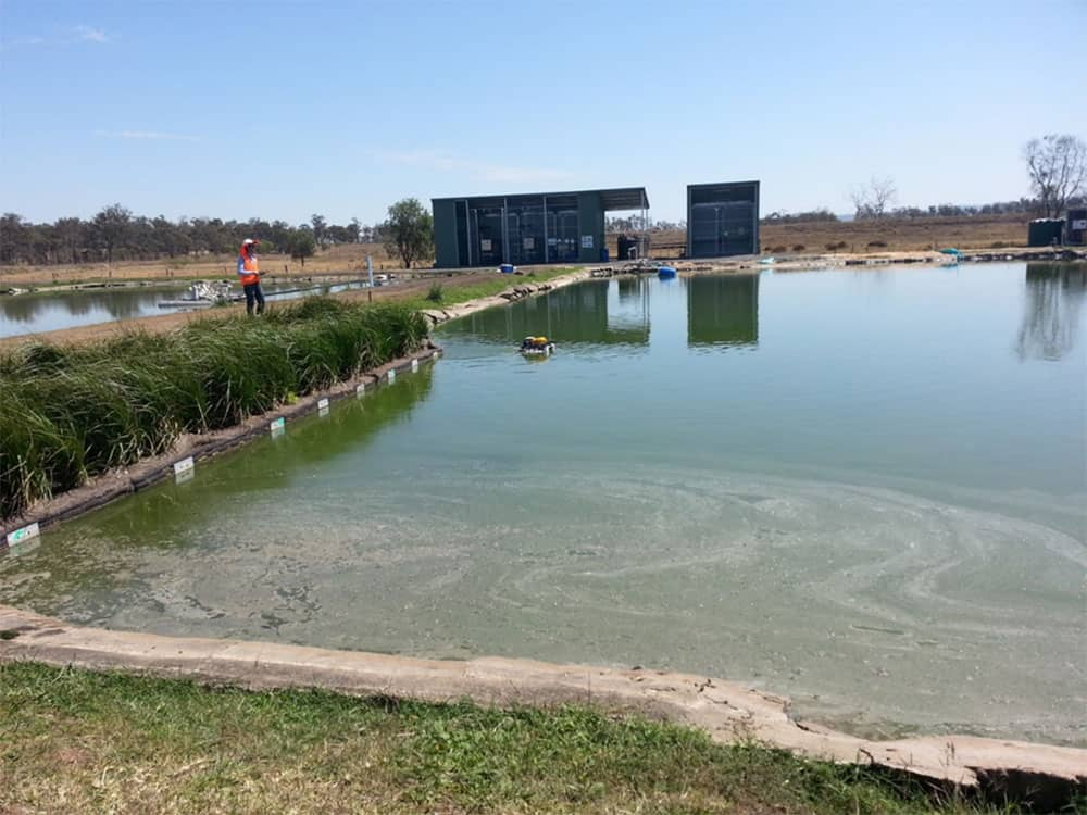 Research looks to improve the efficiency of waste ponds