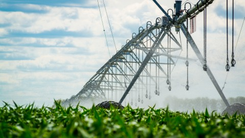 Murray Irrigation's globally advanced water delivery system