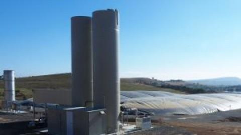 Abattoir to be powered by bioenergy