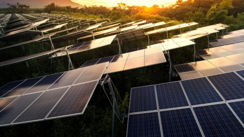Largest solar farm approved for Tasmania