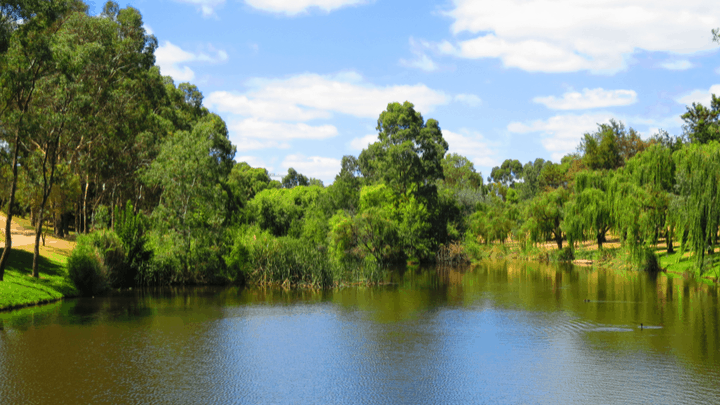 Riverbank repairs begin in South Australia