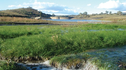 Pioneering stormwater harvesting  for potable use in Australia