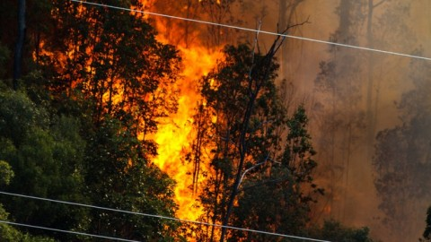 Electricity upgrades underway before bushfire season