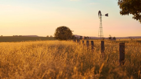Regulation reform for rural customers