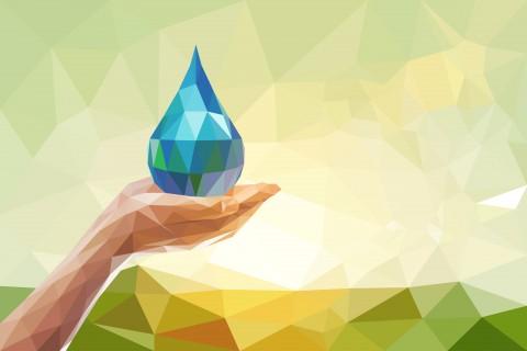 The Western Australia Waterwise program