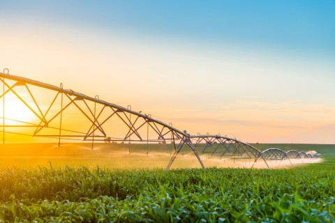 Immediate access to water for irrigators