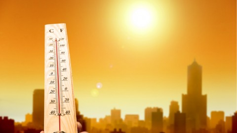 How networks are dealing with today's record temperatures