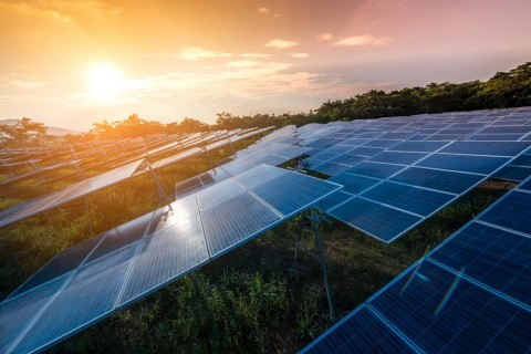 The risks of new rules for solar farms