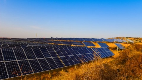 Aldoga solar farm hits major milestone