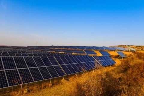 Aldoga solar farm hits major milestone