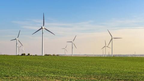 $315 million Badgingarra Wind Farm officially opens