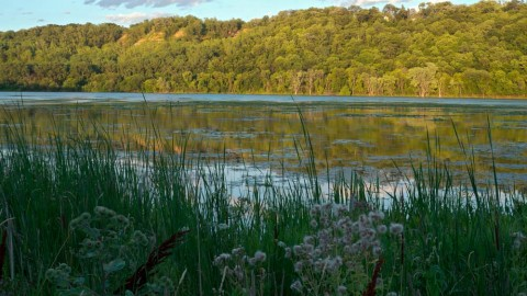Upgrade works set to commence on Lillydale Lake Wetlands