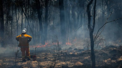 AGL provides $200,000 to support Gippsland bushfire victims
