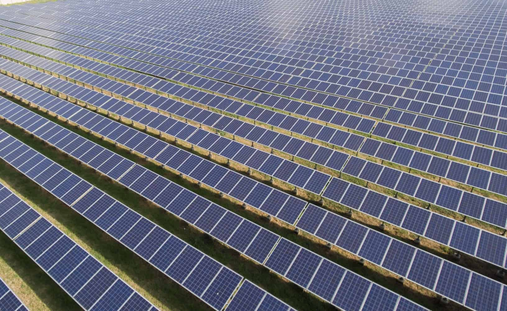 Shell starts work on large-scale solar farm