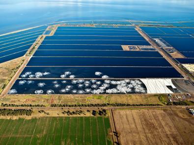 Aerial shot of Western Treatment Plant lagoon
