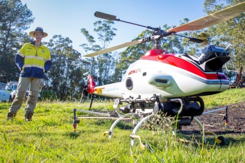 Seqwater uses mini-helicopters against invasive weeds