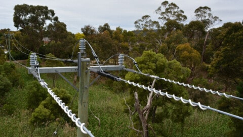 United Energy rolls outs $1.7 million power safety program in Victoria