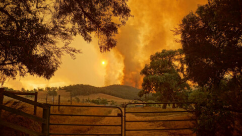 New agreement to spark bushfire simulation tech