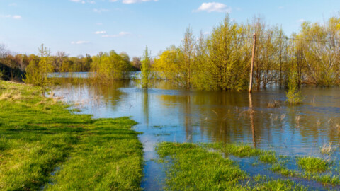 Endeavour Energy announces flood recovery package for customers